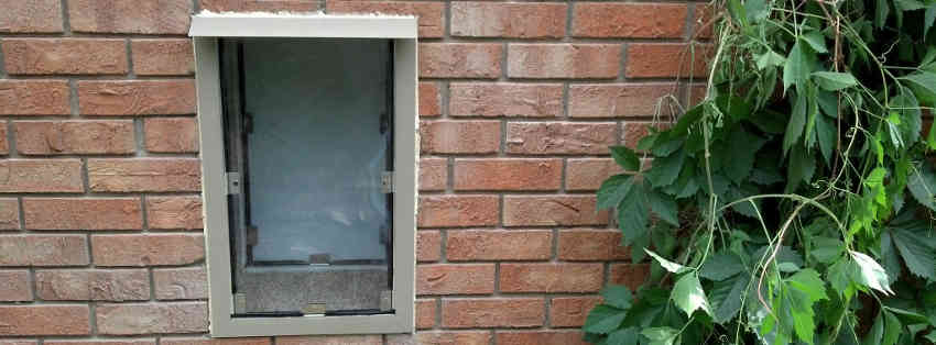 Sliding glass patio dog doors in denver and the front - Exterior door with pet door installed ...