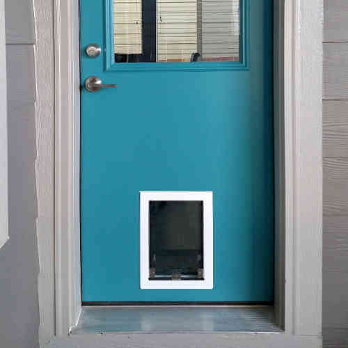 1000 images about dog door ideas for home on pinterest for Dog door options